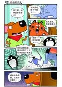 动物知识漫画